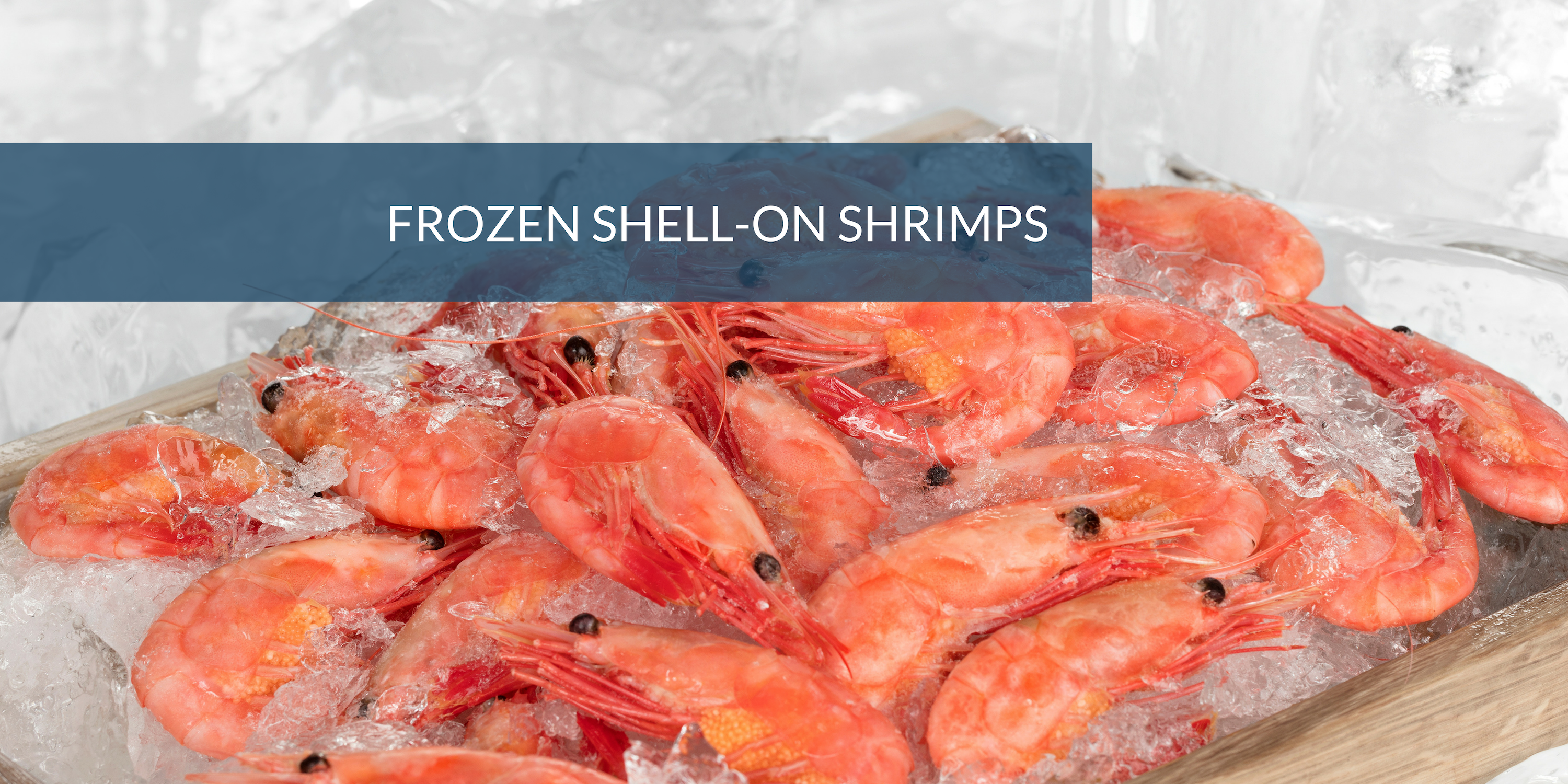 FROZEN SHELL-ON SHRIMPS